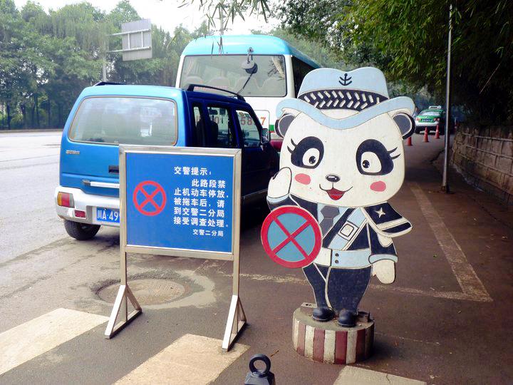 Seeing Chengdu's GiantPandas